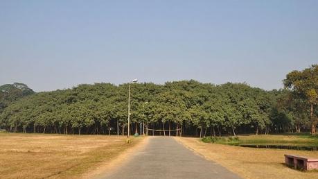 இந்தியாவில் உள்ள முதன்மையான, புகழ்பெற்ற மற்றும் பழமையான ஆலமரங்கள்