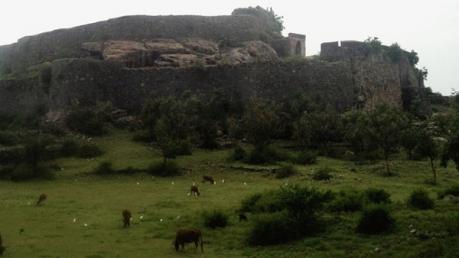 அழிக்கப்பட்ட கோட்டை மேடு..! கோயம்புத்தூரின் அதிர்ச்சி வரலாறு தெரியுமா ?