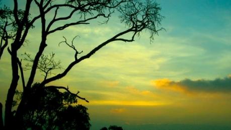 தமிழகத்தில் எந்தெந்த இடங்களில் வியூபாய்ண்ட்ஸ் இருக்கு தெரியுமா?