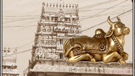 கையில் தாராளம் பணம் புரளும் இந்த கோவிலுக்கு சென்றால்! எந்த ராசிக்காரருக்கு தெரியுமா?