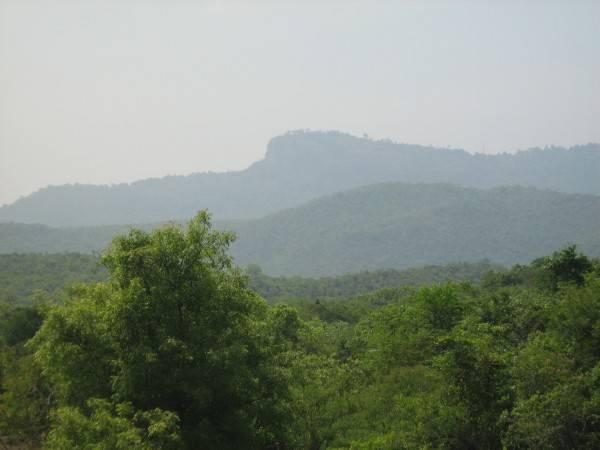 A Forest Tamil Nadu Karnataka Border Will Make You Enjoy