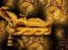 உலகம் அழியும் நாள்: பத்மநாபசுவாமி கோயிலின் கடைசி அறையில் புதைந்துள்ள மர்மங்கள்